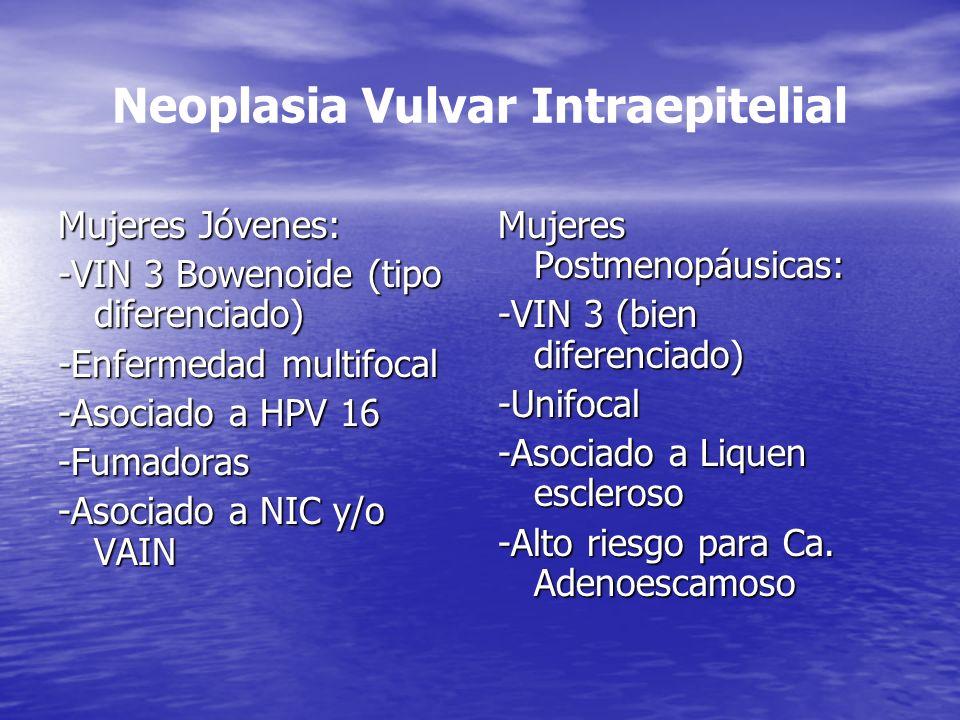 Neoplasia Vulvar Intraepitelial