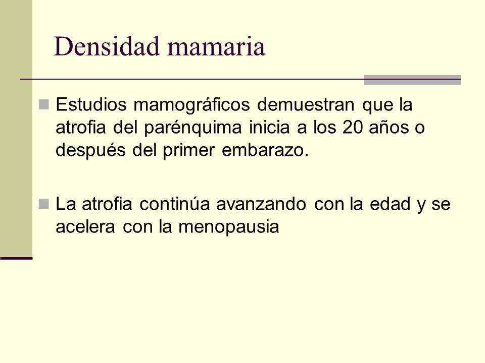 Densidad mamaria Estudios mamográficos demuestran que la atrofia del parénquima inicia a los 20 años o después del primer embarazo.