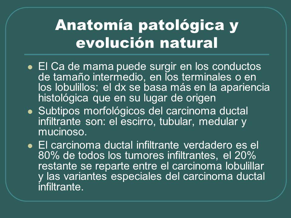 Anatomía patológica y evolución natural