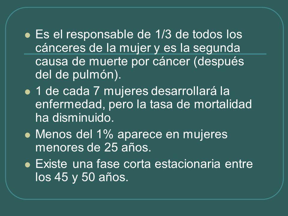Es el responsable de 1/3 de todos los cánceres de la mujer y es la segunda causa de muerte por cáncer (después del de pulmón).