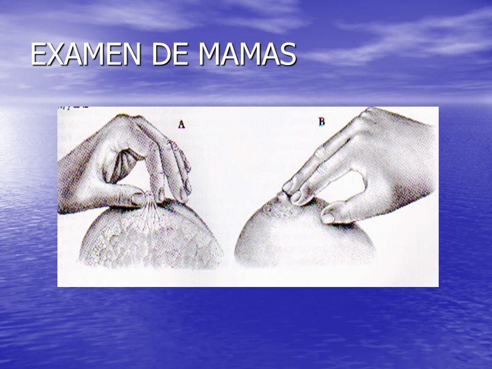 EXAMEN DE MAMAS