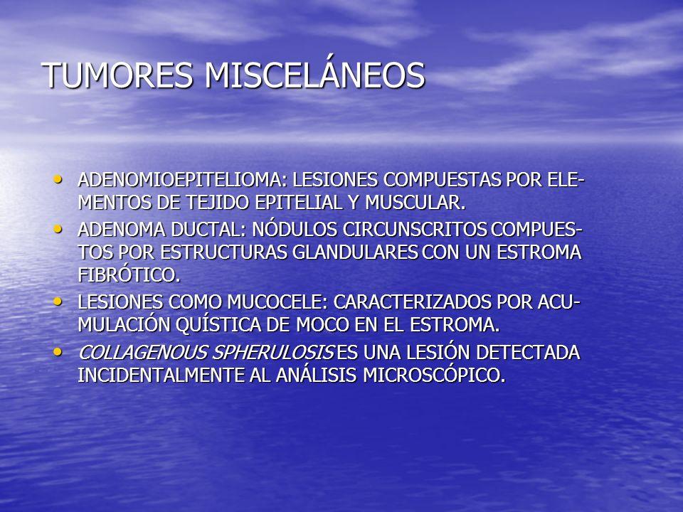 TUMORES MISCELÁNEOS ADENOMIOEPITELIOMA: LESIONES COMPUESTAS POR ELE-MENTOS DE TEJIDO EPITELIAL Y MUSCULAR.