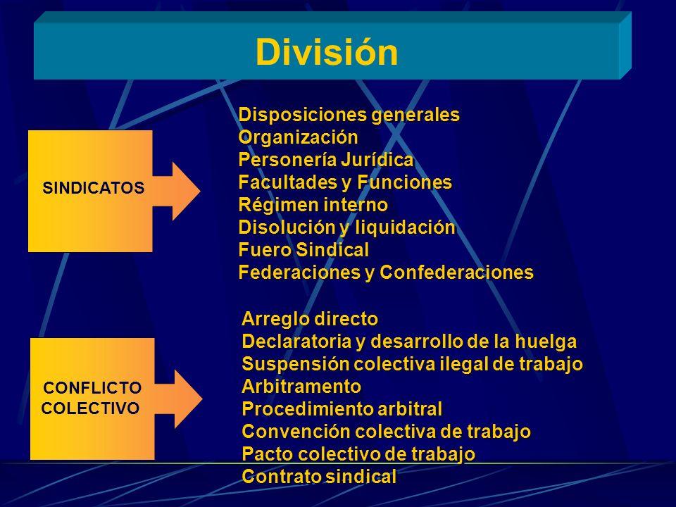 División Disposiciones generales Organización Personería Jurídica
