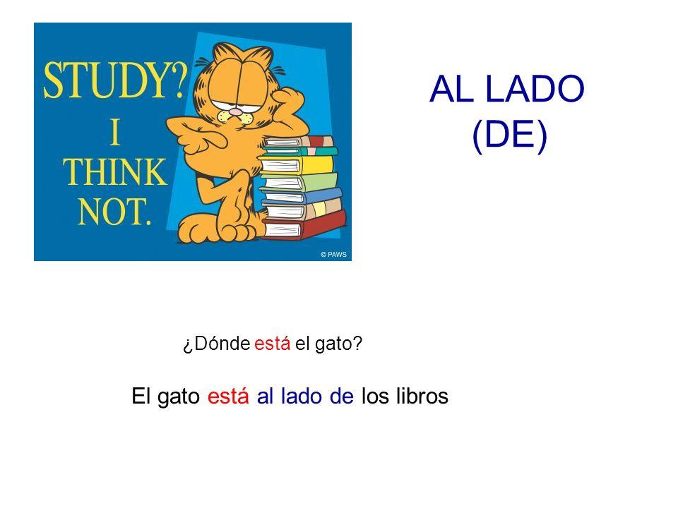 AL LADO (DE) ¿Dónde está el gato El gato está al lado de los libros