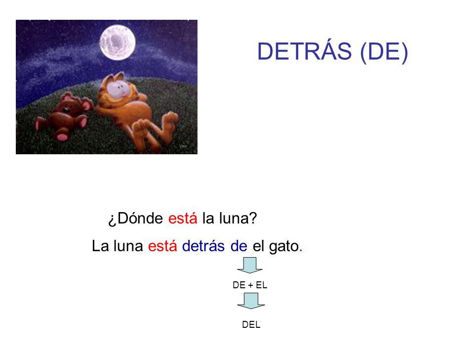 DETRÁS (DE) ¿Dónde está la luna La luna está detrás de el gato.