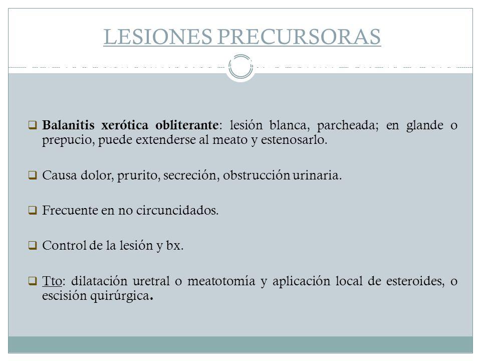 LESIONES PRECURSORAS No necesariamente desarrollan Ca. de pene