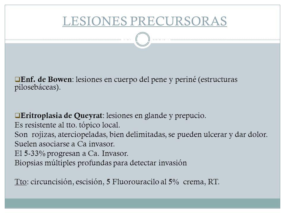 LESIONES PRECURSORAS Ca in situ