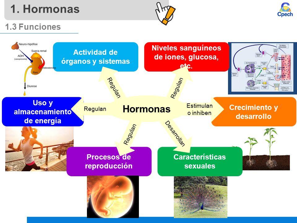 hormonas esteroidales funcion