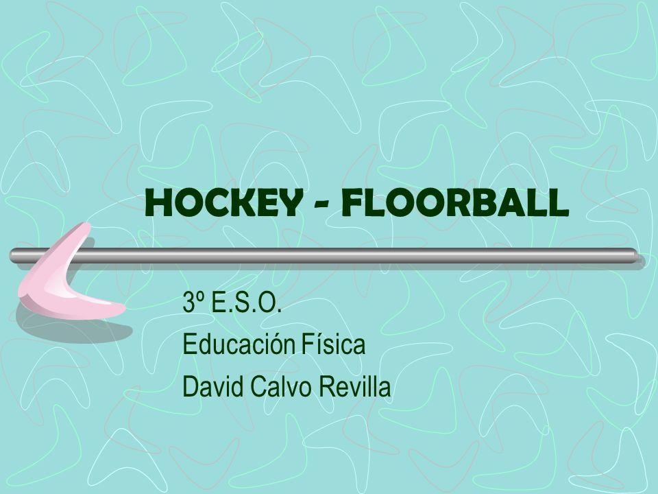 3º E.S.O. Educación Física David Calvo Revilla