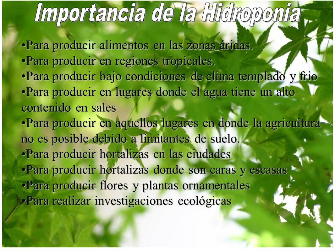 Grow shops ppt descargar for Importancia de las plantas ornamentales