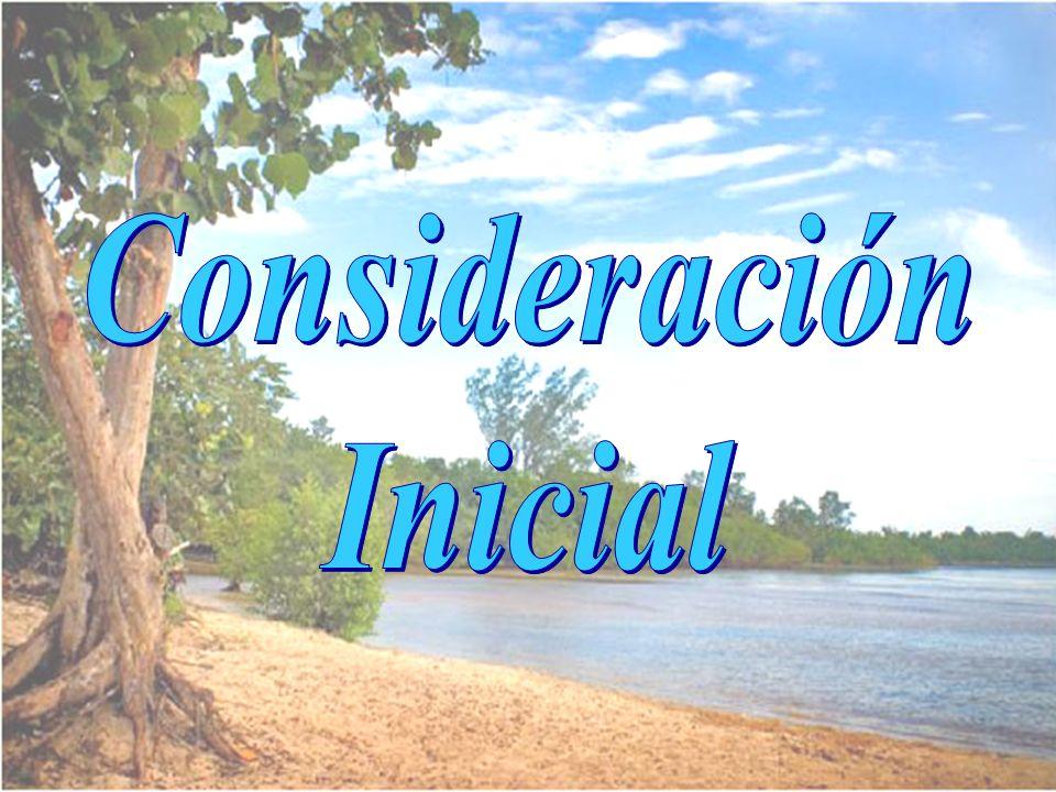Consideración Inicial