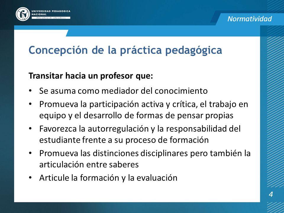 Concepción de la práctica pedagógica