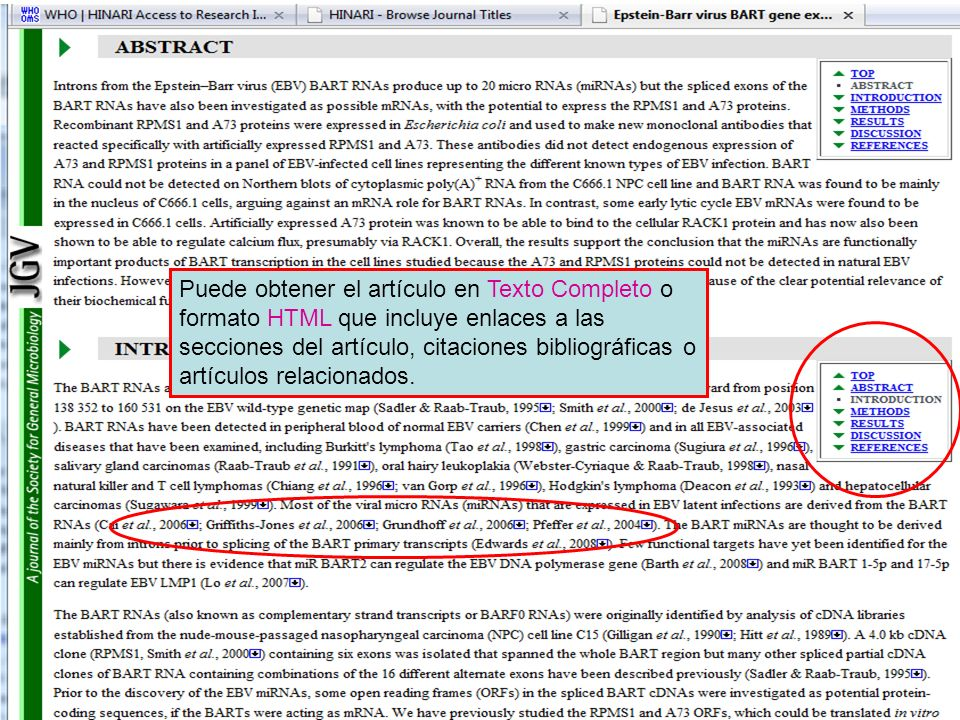 Puede obtener el artículo en Texto Completo o formato HTML que incluye enlaces a las secciones del artículo, citaciones bibliográficas o artículos relacionados.