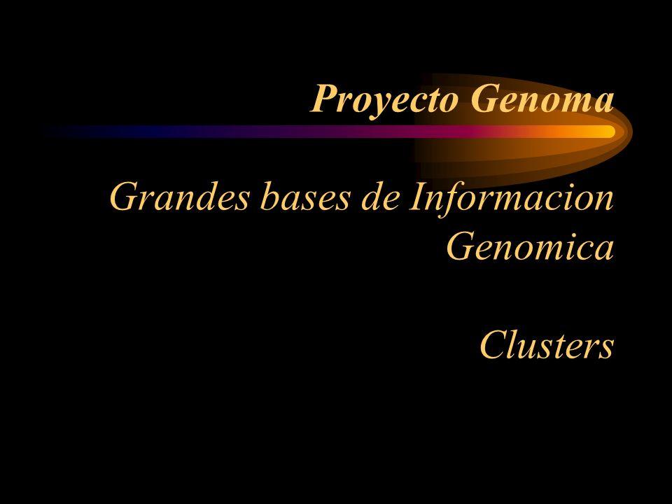 Proyecto Genoma Grandes bases de Informacion Genomica Clusters