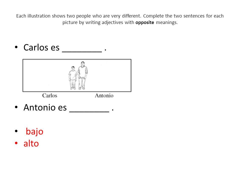 Carlos es ________ . Antonio es ________ . bajo alto