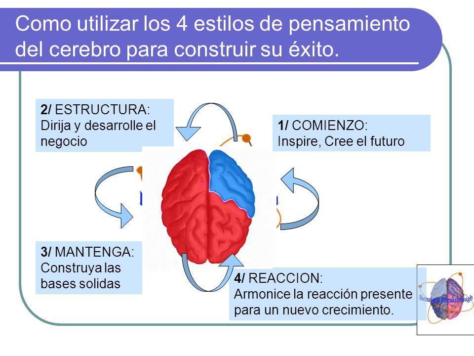 Como utilizar los 4 estilos de pensamiento del cerebro para construir su éxito.