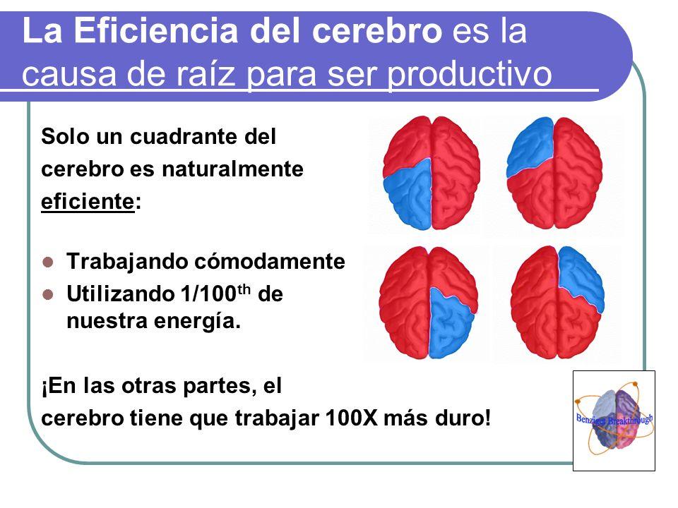 La Eficiencia del cerebro es la causa de raíz para ser productivo
