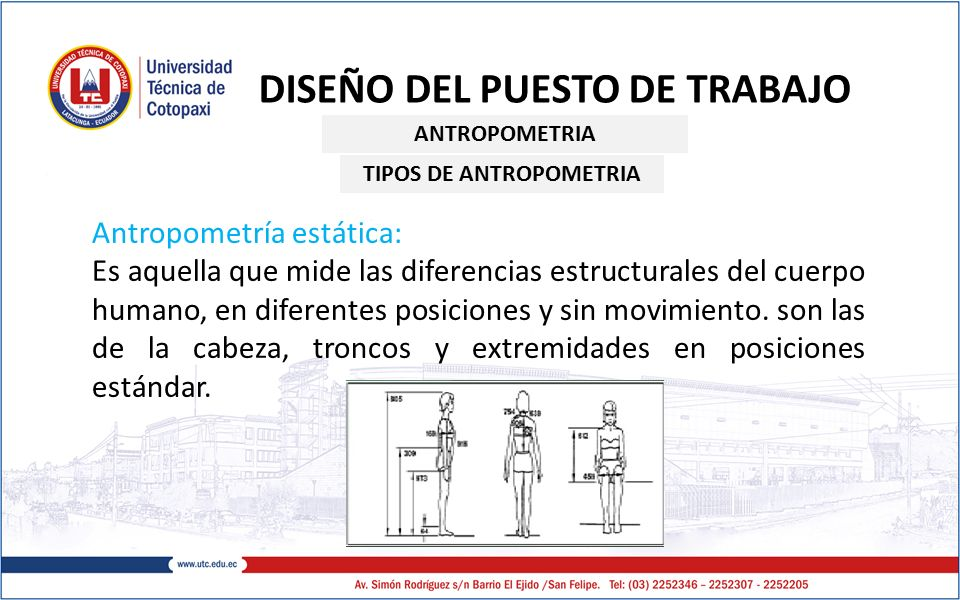 Ergonom a y dise o de puestos de trabajo ppt video for Antropometria estatica