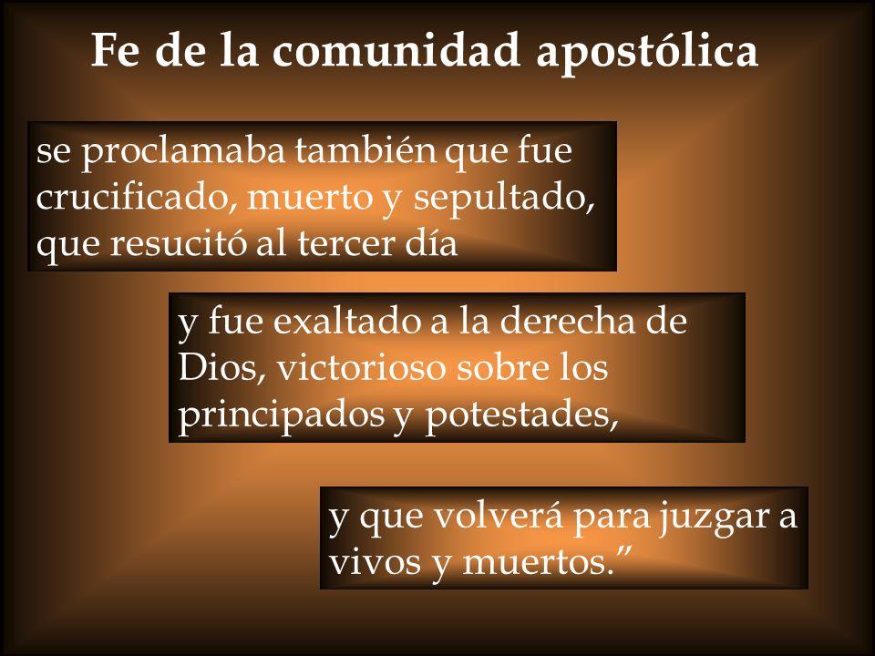 Fe de la comunidad apostólica