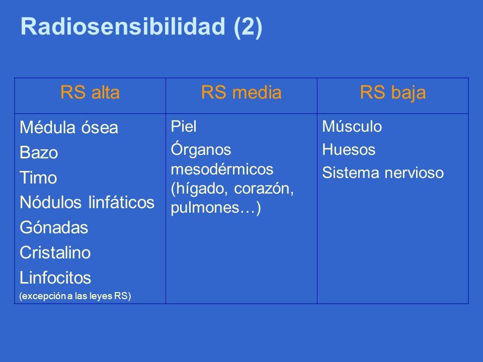 Radiosensibilidad (2) RS alta RS media RS baja Médula ósea Bazo Timo