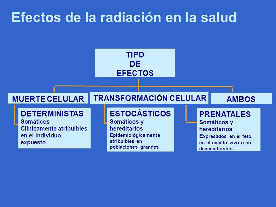 Efectos de la radiación en la salud
