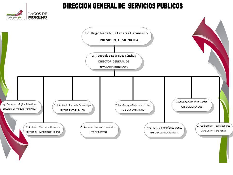 DIRECCION GENERAL DE SERVICIOS PUBLICOS