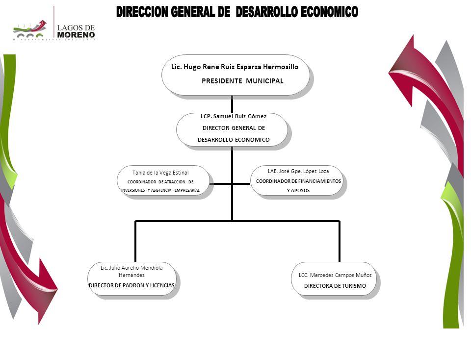 DIRECCION GENERAL DE DESARROLLO ECONOMICO