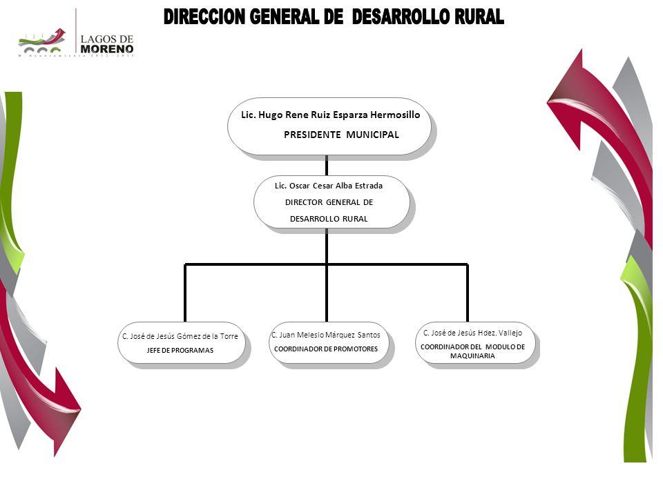 DIRECCION GENERAL DE DESARROLLO RURAL
