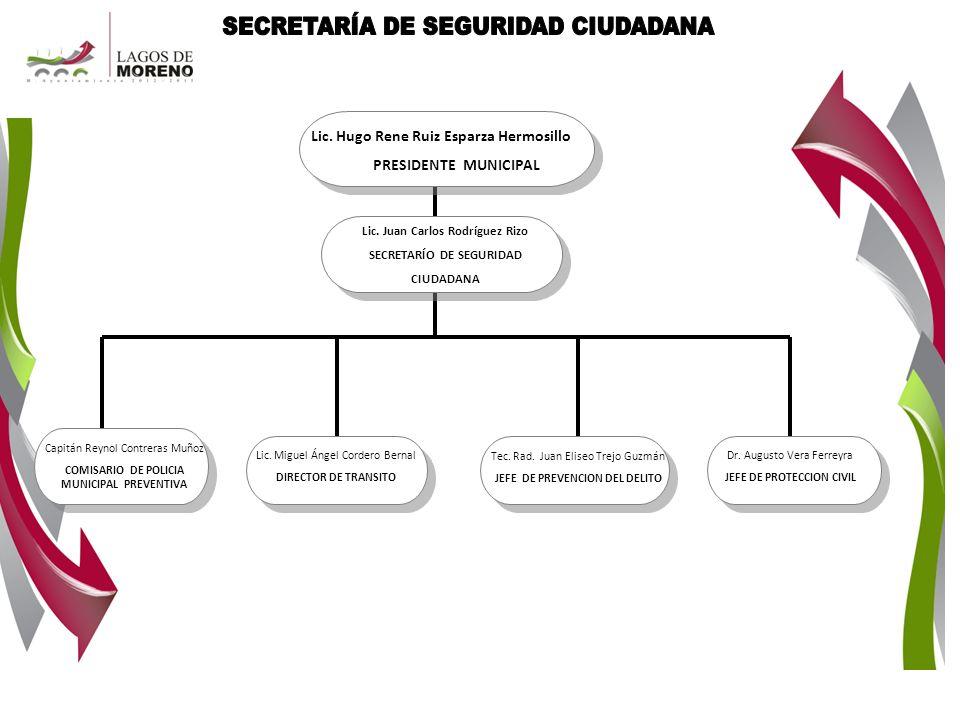 SECRETARÍA DE SEGURIDAD CIUDADANA