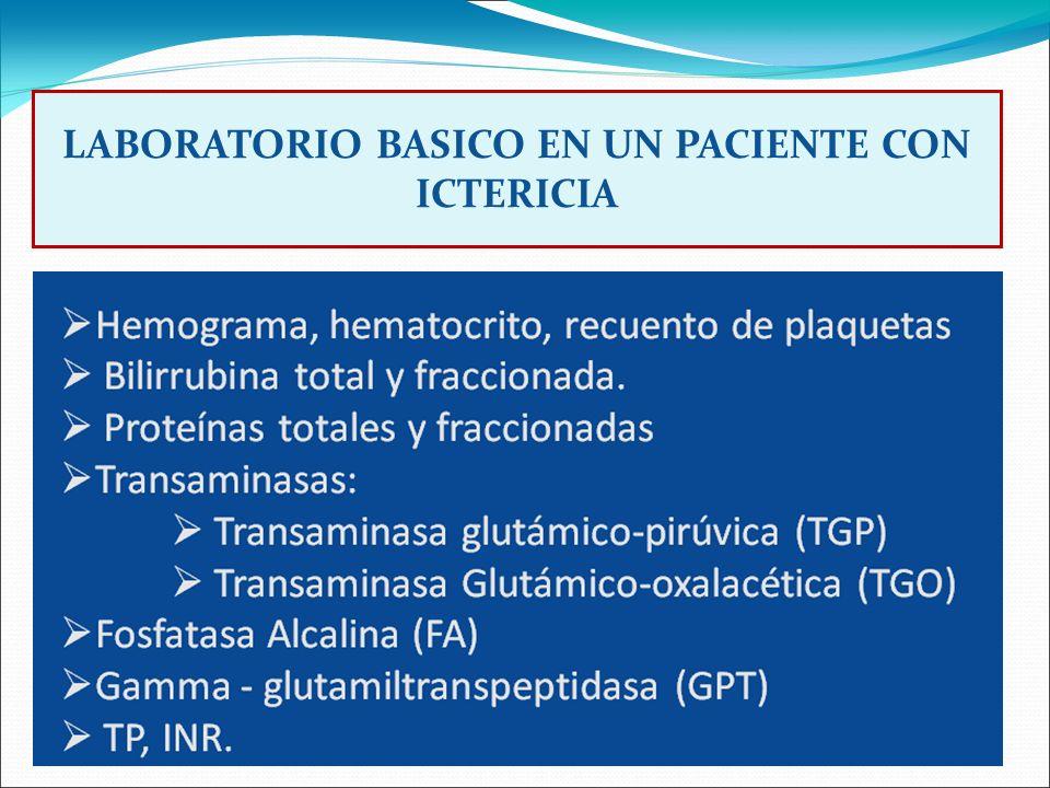 LABORATORIO BASICO EN UN PACIENTE CON ICTERICIA