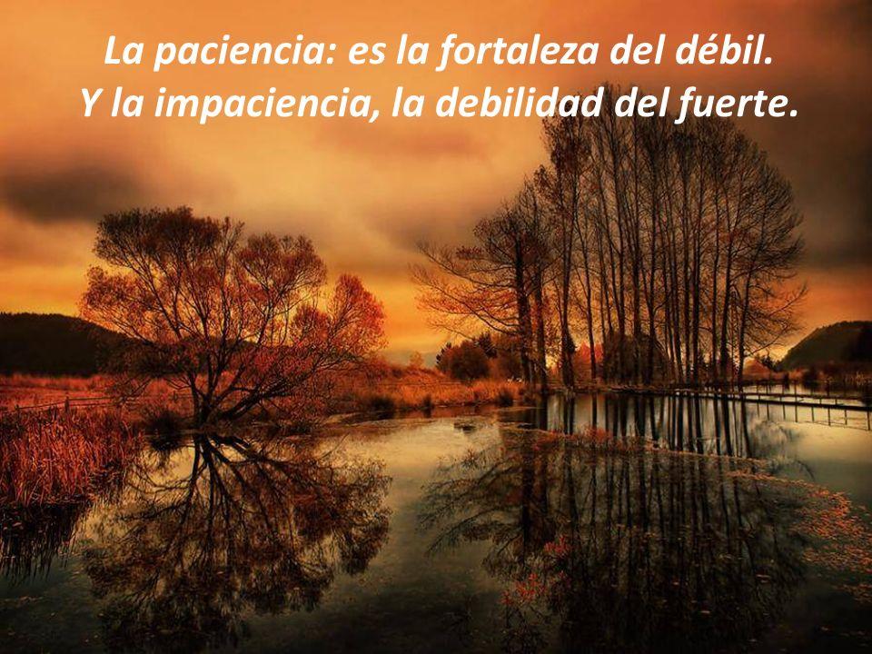 La paciencia: es la fortaleza del débil