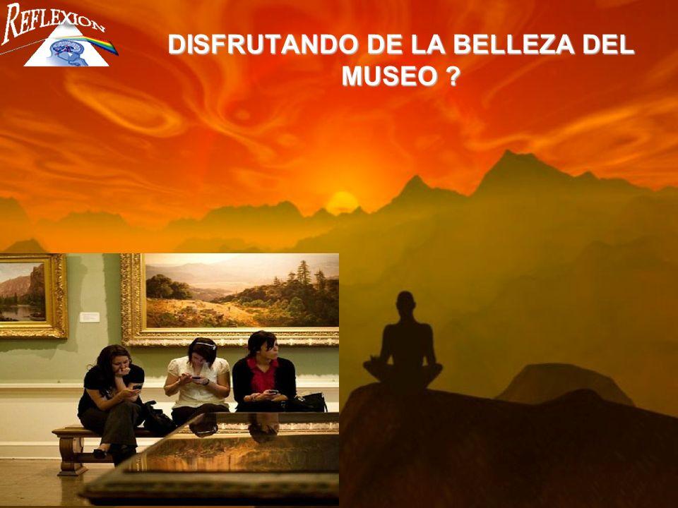 DISFRUTANDO DE LA BELLEZA DEL MUSEO
