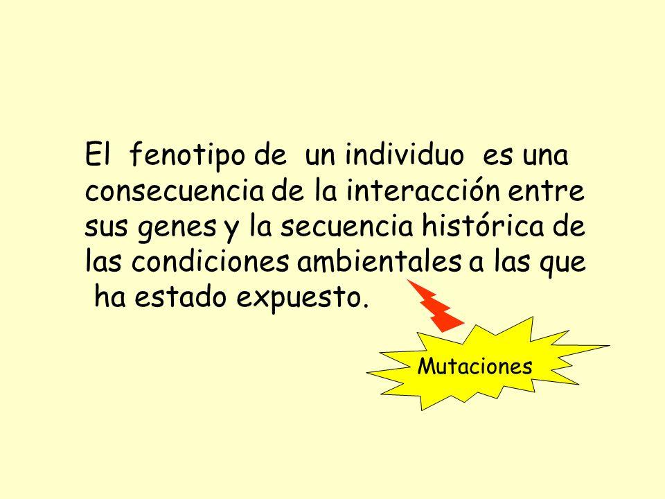 sus genes y la secuencia histórica de