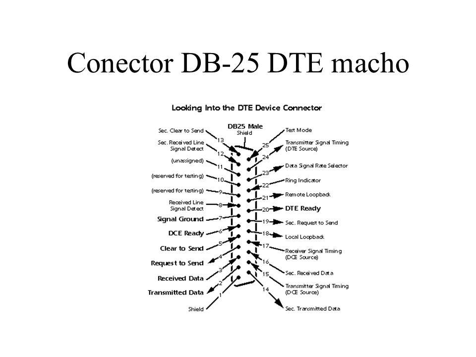 Conector DB-25 DTE macho