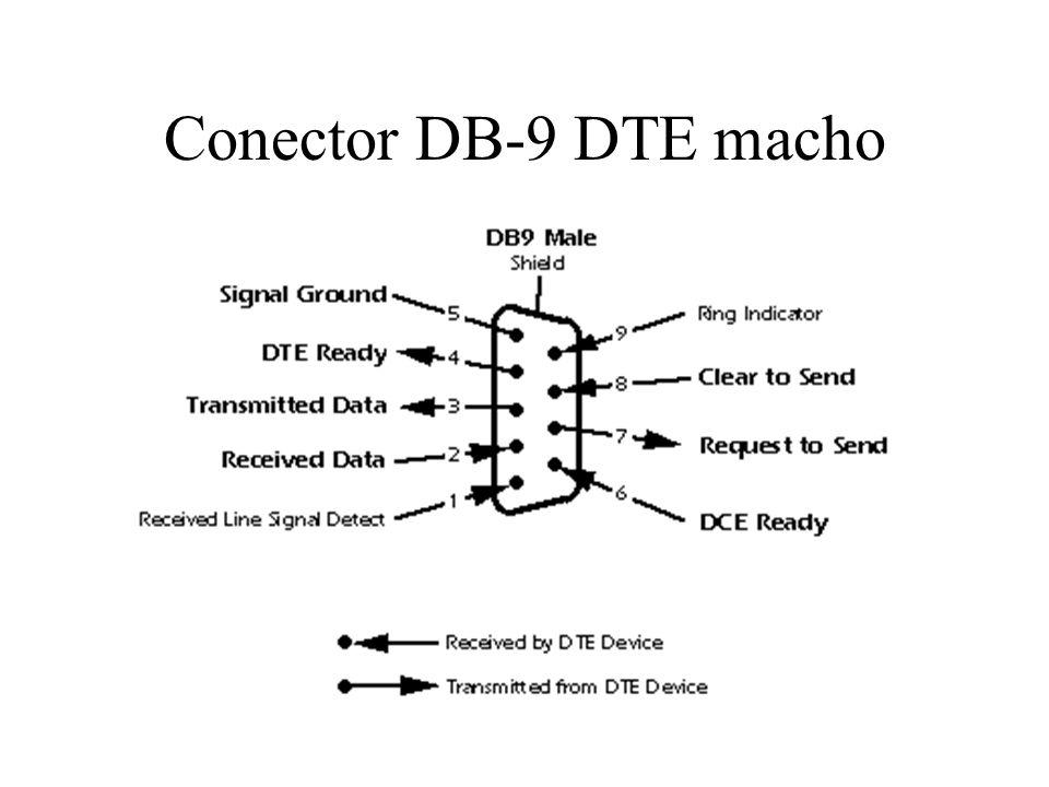 Conector DB-9 DTE macho