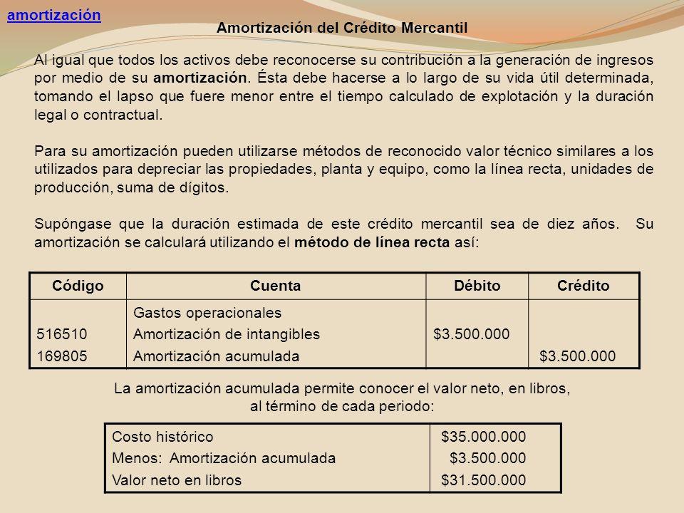 amortización Amortización del Crédito Mercantil.