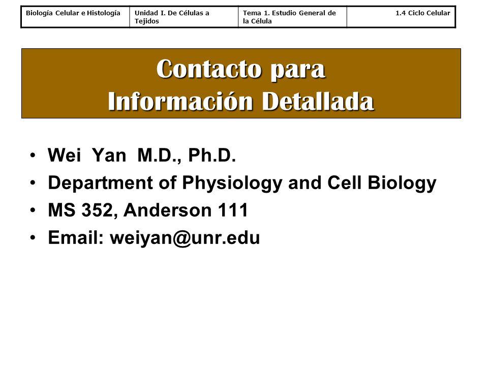 Contacto para Información Detallada
