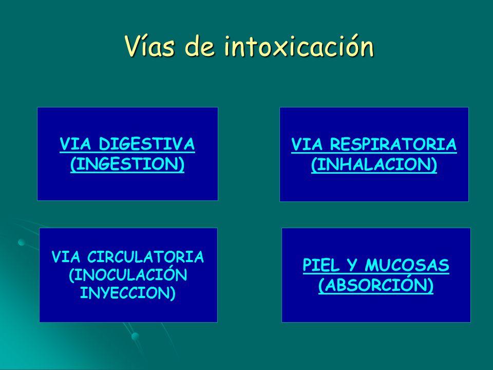 Vías de intoxicación VIA DIGESTIVA (INGESTION) VIA RESPIRATORIA