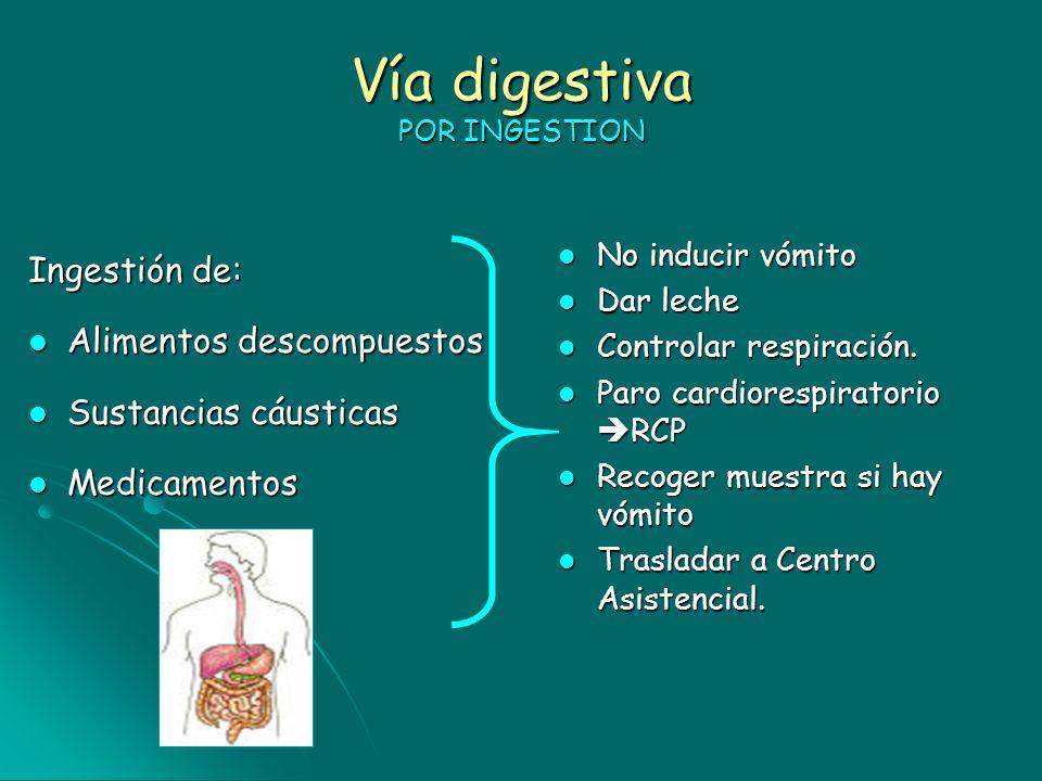 Vía digestiva POR INGESTION