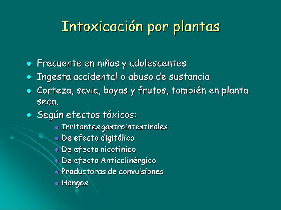 Intoxicación por plantas