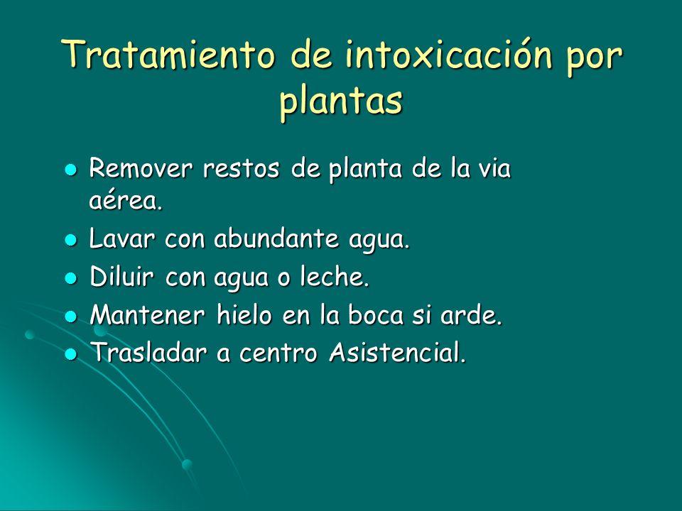 Tratamiento de intoxicación por plantas