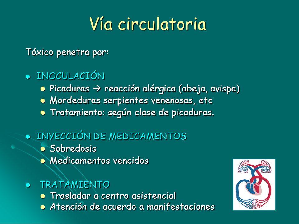 Vía circulatoria Tóxico penetra por: INOCULACIÓN