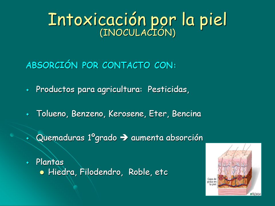 Intoxicación por la piel (INOCULACIÓN)