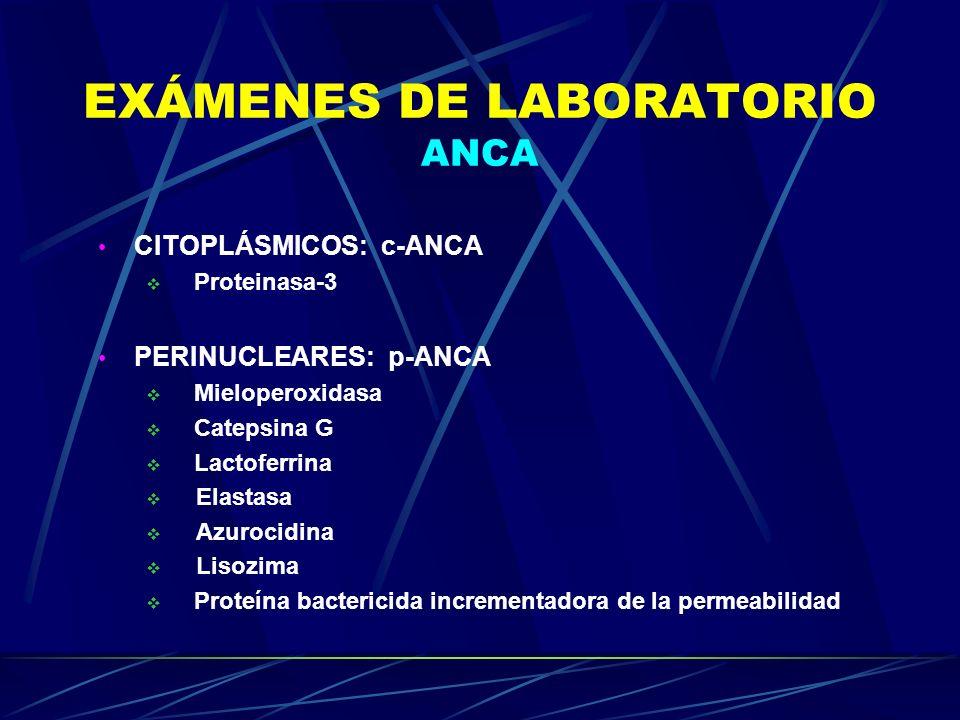 EXÁMENES DE LABORATORIO ANCA