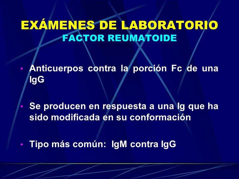 EXÁMENES DE LABORATORIO FACTOR REUMATOIDE