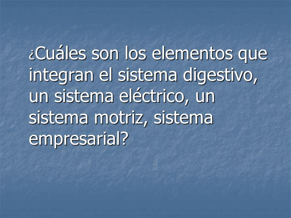¿Cuáles son los elementos que integran el sistema digestivo, un sistema eléctrico, un sistema motriz, sistema empresarial