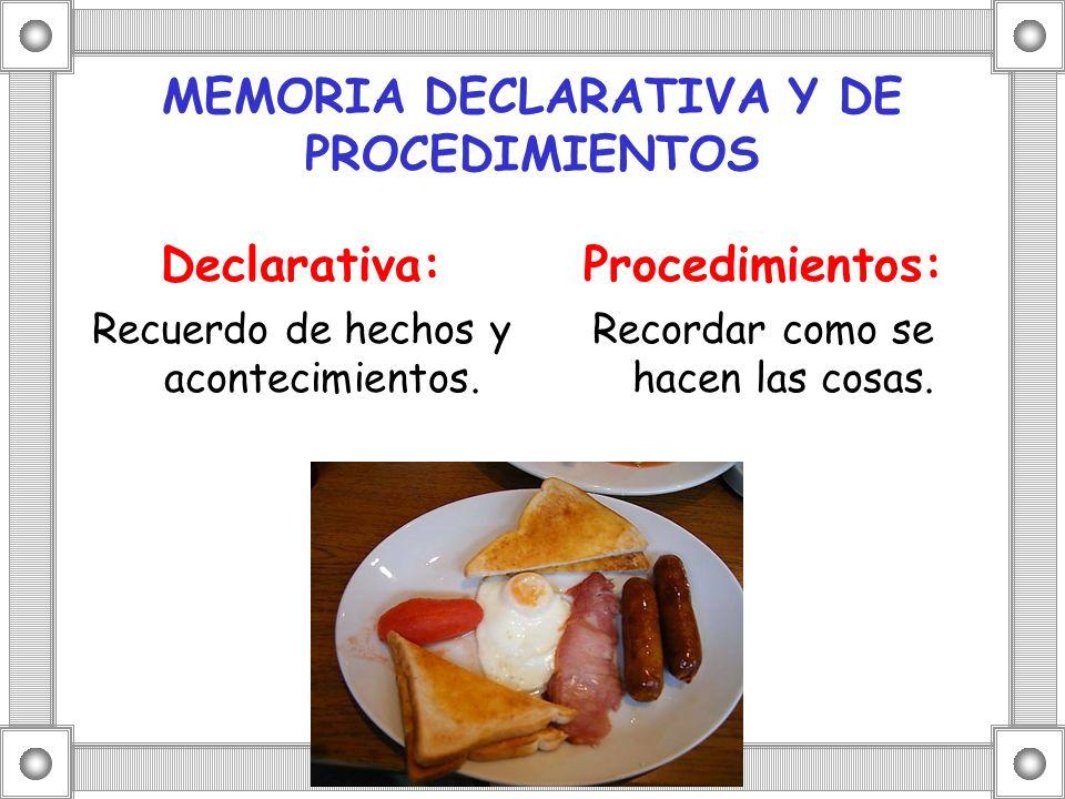 MEMORIA DECLARATIVA Y DE PROCEDIMIENTOS