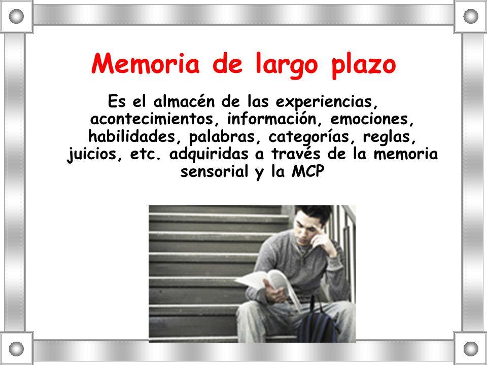 Memoria de largo plazo
