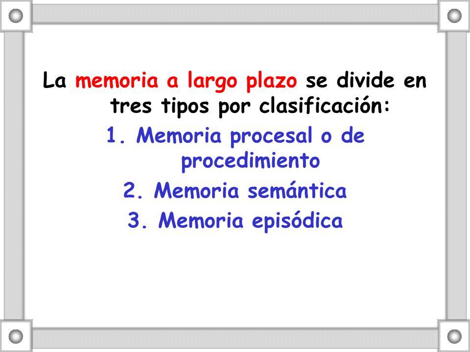 La memoria a largo plazo se divide en tres tipos por clasificación: