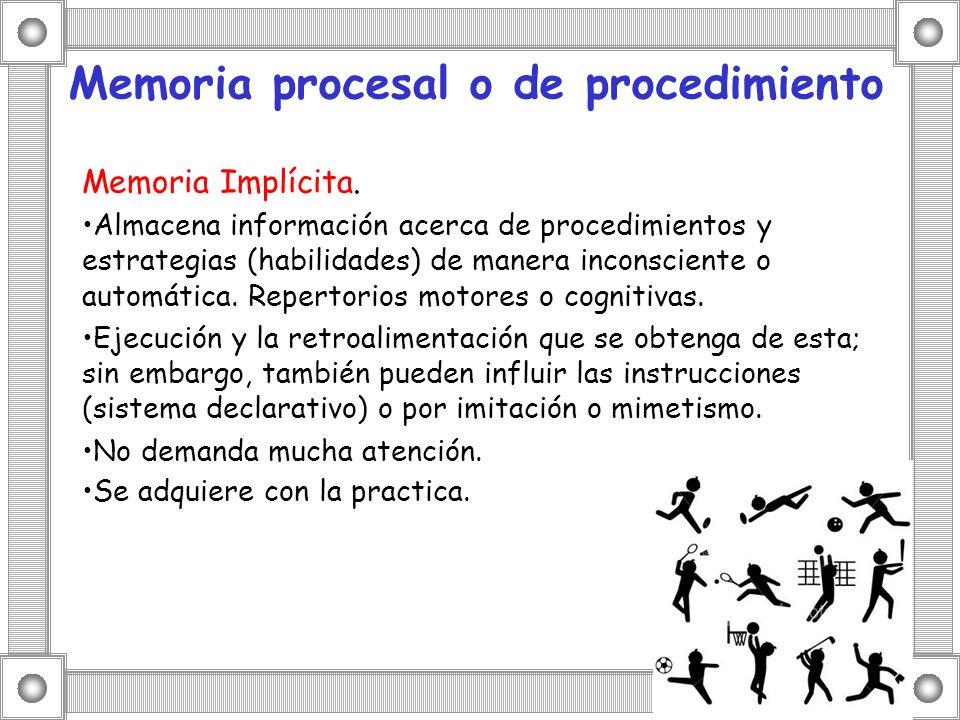 Memoria procesal o de procedimiento
